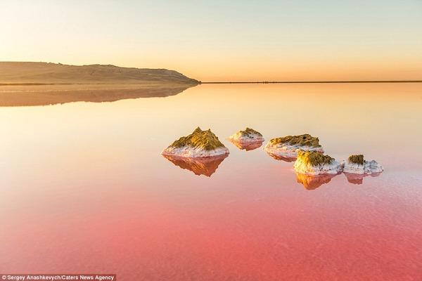 紅く染まる塩湖 Koyashskoye 11