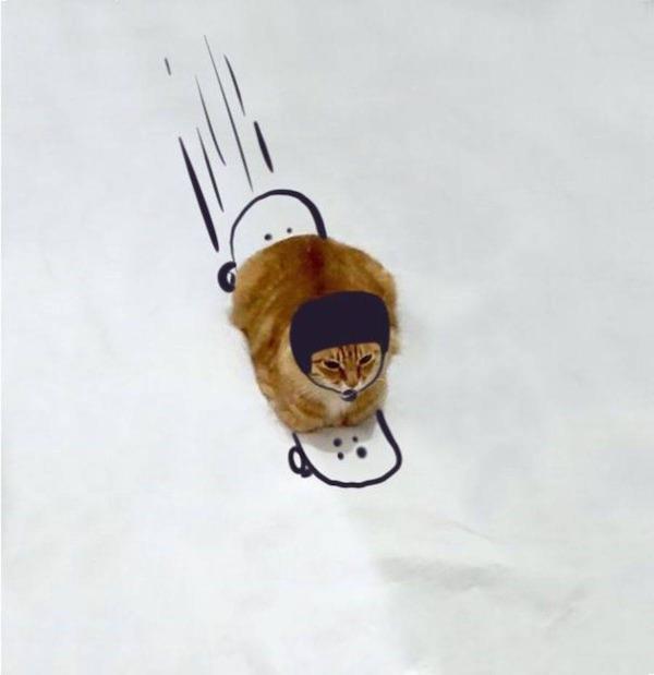 才能の無駄遣い?香箱座りの猫の画像にみんなで落書き! (12)