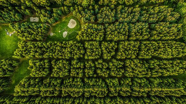 『Dronestagram 2016』!ドローンでスゴイ空撮写真を競うよー (16)