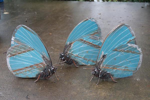 スクラップ金属から作られた鳥や蝶などの金属彫刻 (1)