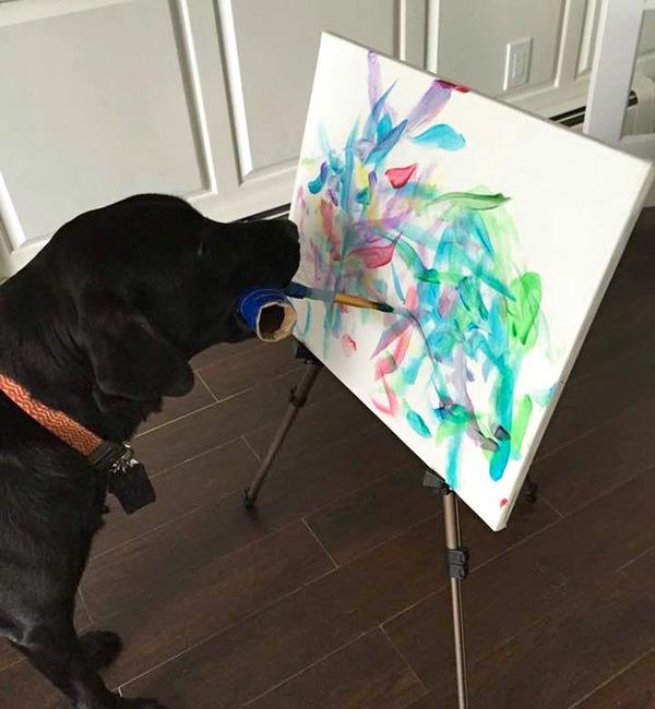 犬の画伯現る!補助犬から画家に転向したわんこの絵 (3)