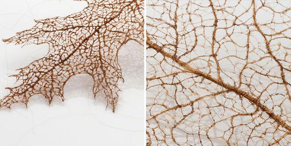 超繊細!人間の髪の毛で作るリアルな木の葉 (11)