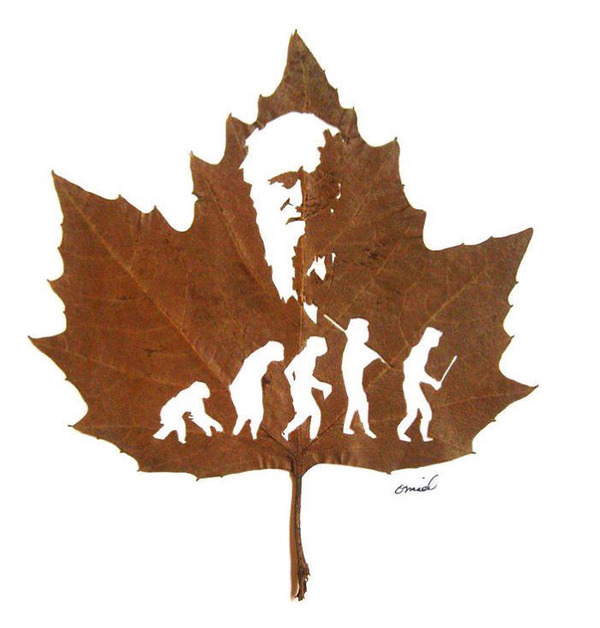 脆くて繊細な落ち葉にモチーフを彫る!カッティングアート (9)