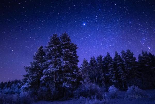 綺麗すぎ!フィンランドの夜空、満天の星空の写真 (11)