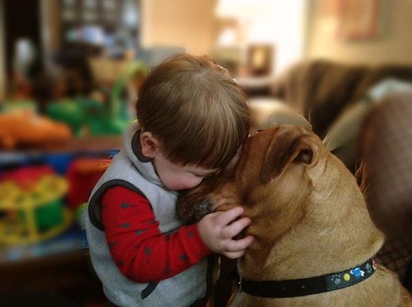 ペットは大切な家族!犬や猫と人間の子供の画像 (64)