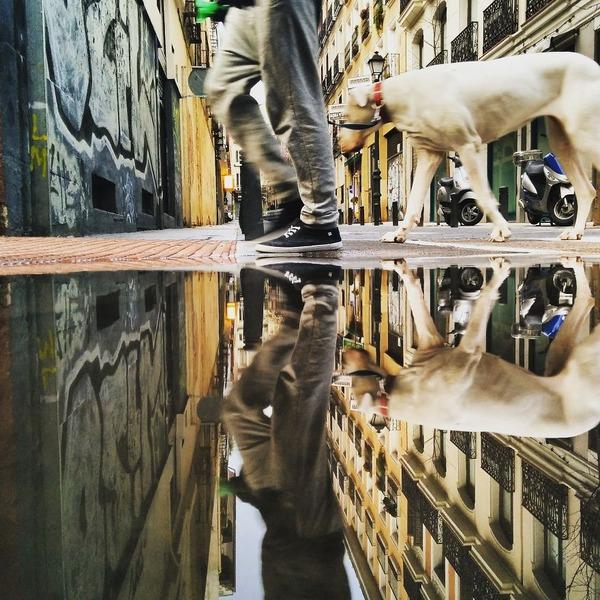 パラレルワールド!水たまりに反射する街の風景写真 (3)