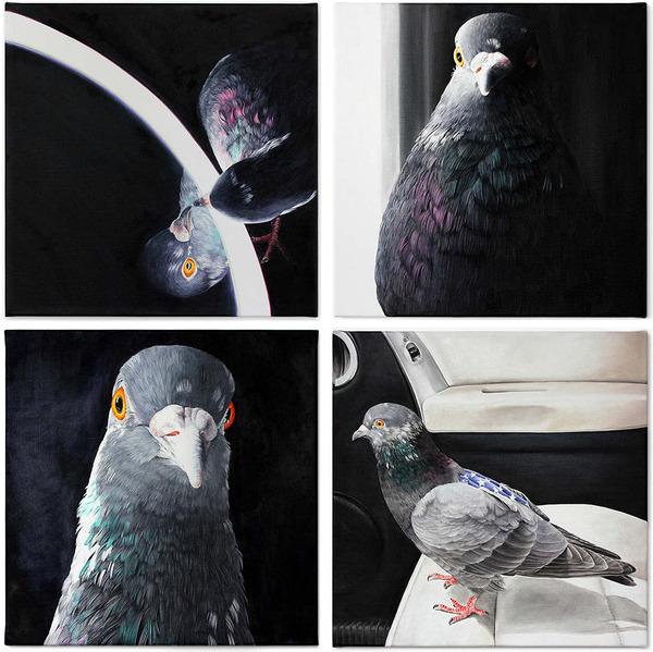美しい鳩の油絵!卵から孵化して家族となった鳩 (9)