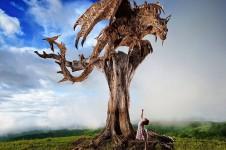 完全にボスキャラ!流木から作られたドラゴンの彫像