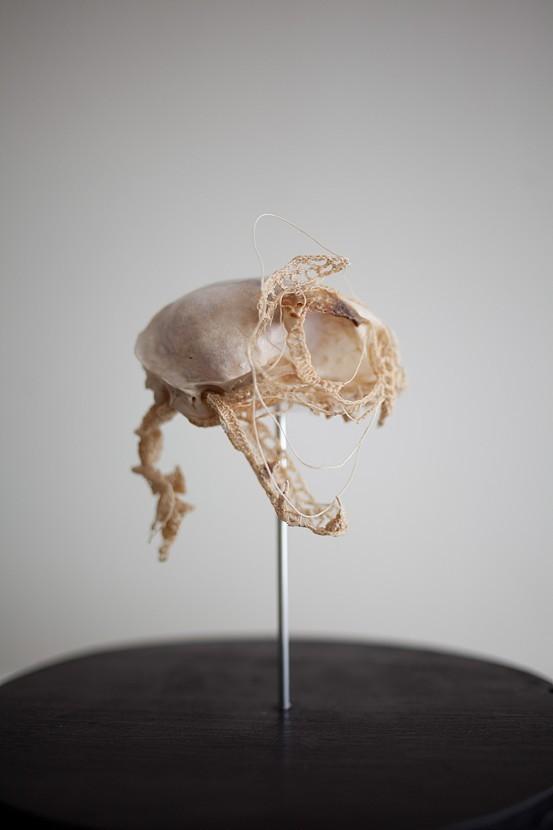 綿糸から作られた動物の骨格彫刻 (2)