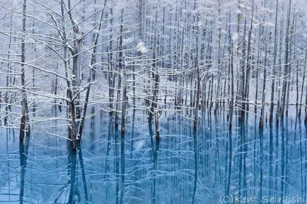幻想的な水