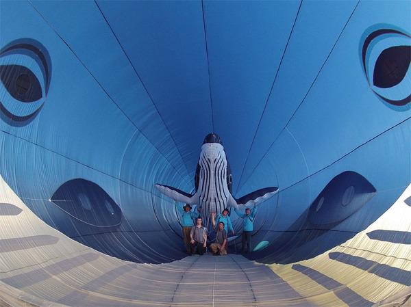 空の水族館!超大きいシロナガスクジラの凧がビーチに浮かぶ (4)