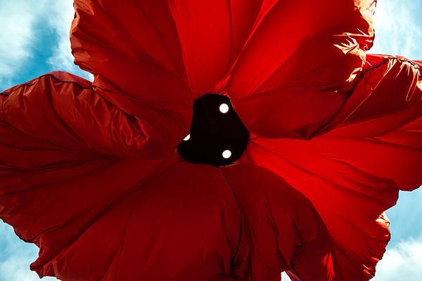 街頭に巨大な花型ランプ!人を感知して花びらが大きく開く (3)