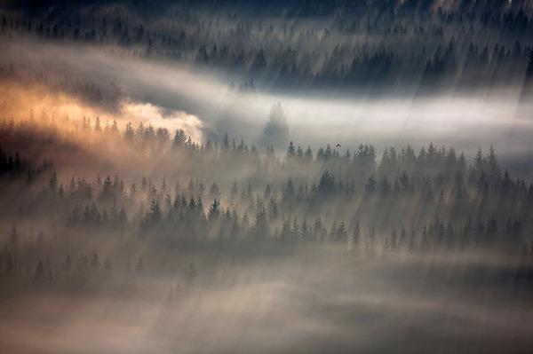 陽が差し込んだポーランドの景色11