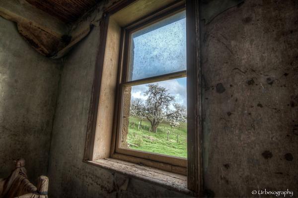 廃墟の部屋の窓から覗く風景 4