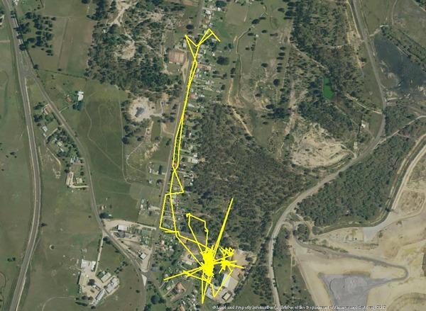 猫の行動範囲が思ったより広い!GPSで猫の行方を追跡 (3)