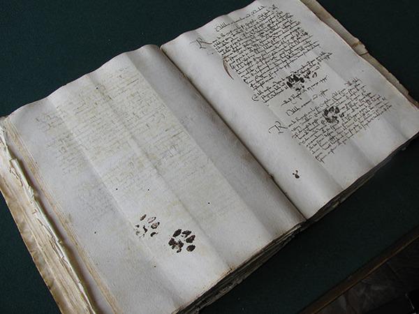 15世紀の肉玉