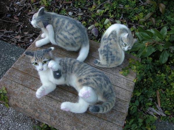 羊毛フェルトのリアル猫人形8