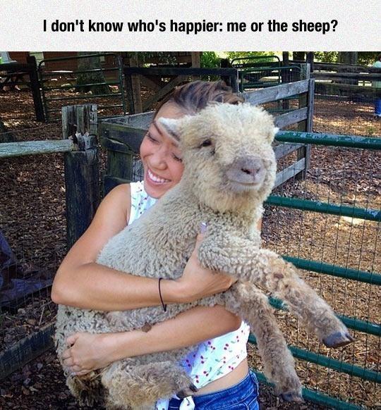 幸せそうな表情を見せる可愛い動物画像12