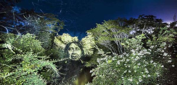 アマゾンの森に投影されたブラジル先住民スルイ族 (4)