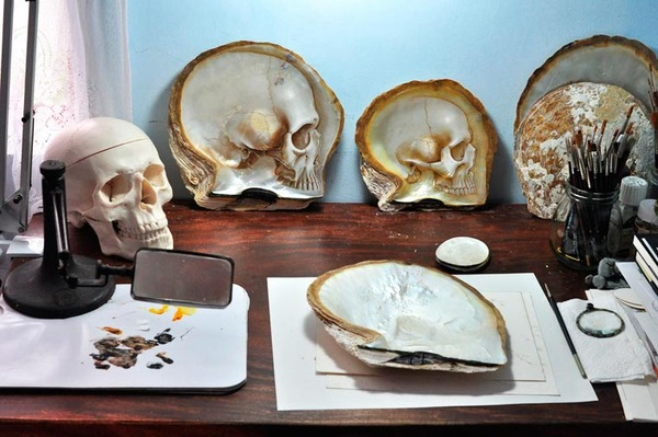 美しい質感。貝殻に髑髏(ドクロ)を彫った彫刻作品 (7)