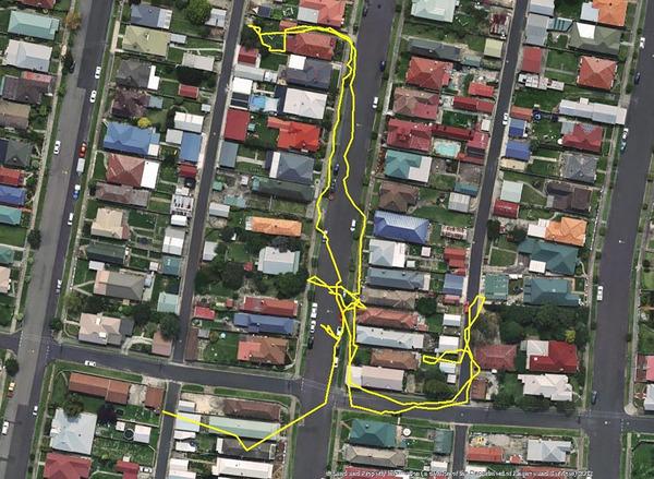 猫の行動範囲が思ったより広い!GPSで猫の行方を追跡 (2)