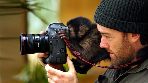 カメラに興味津々な動物の画像 (20)
