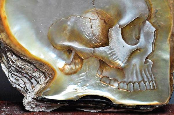 美しい質感。貝殻に髑髏(ドクロ)を彫った彫刻作品 (5)