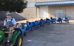 犬列車!列車に乗ってお散歩する80歳のお爺ちゃんと9匹のわんこ