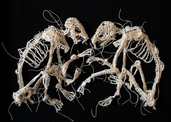 綿糸から作られた動物の骨格彫刻 (12)