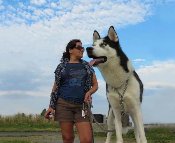 遠近感と錯覚の関係で超巨大に見える犬画像 (10)
