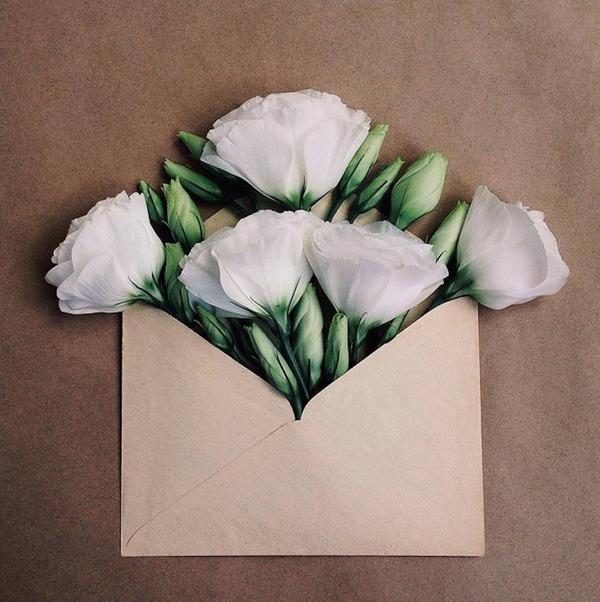 クラフト封筒に入れられた花束 (2)