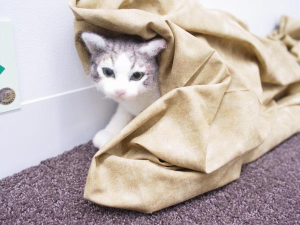 羊毛フェルトのリアル猫人形16