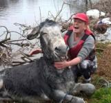 テヘペロ♪溺れかけていたロバを助けた時の満面の笑顔がかわいい