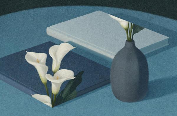 色んな本の形。本をモチーフにしたイラスト (2)