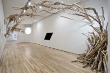 流木のイルカ彫刻!絶滅したヨウスコウカワイルカの運命