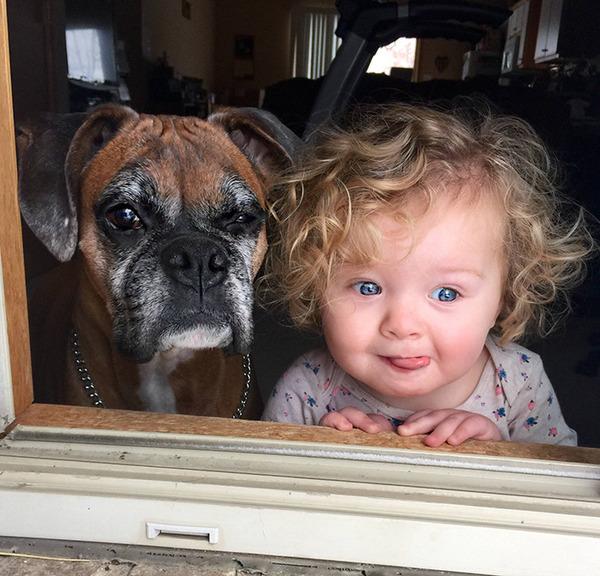 ペットは大切な家族!犬や猫と人間の子供の画像 (60)