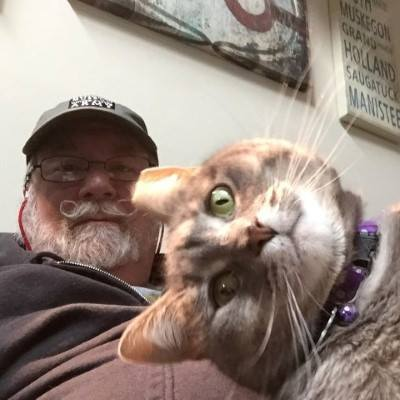 猫のセルフィ17