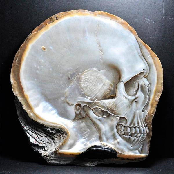 美しい質感。貝殻に髑髏(ドクロ)を彫った彫刻作品 (6)