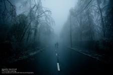 世界に終焉が訪れた。氷霧の後、街の全てが凍てついた