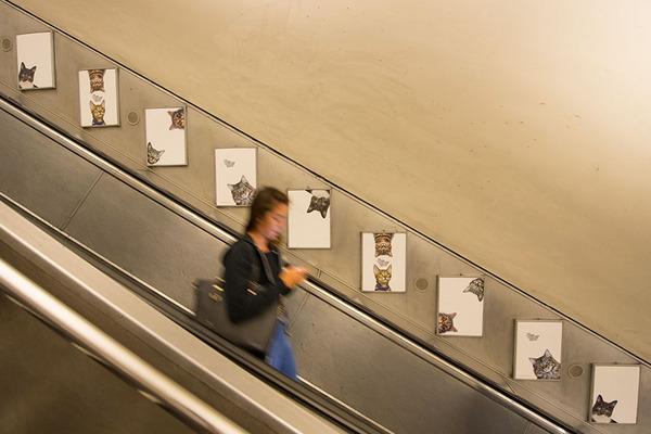 猫だらけ!猫の写真で満たされたロンドンの地下鉄 (7)