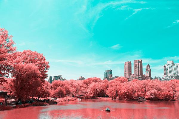 IR(赤外線)カメラで撮影されたセントラル・パーク (4)