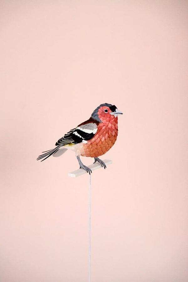 カラフル!リアル!鳥や蝶をモチーフにした紙の彫刻作品 (14)