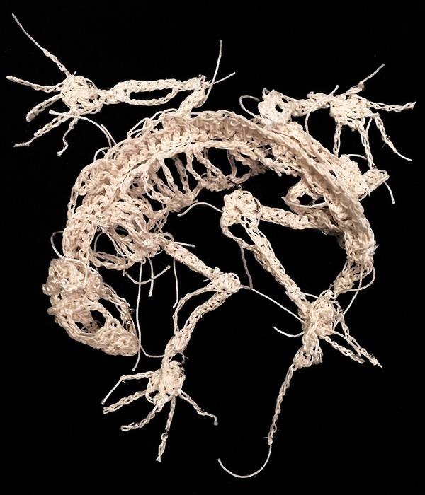 絹糸から作られた動物の骨格彫刻 (5)