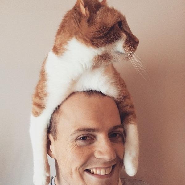 猫帽子 12