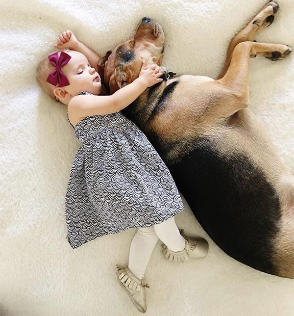 ペットは大切な家族!犬や猫と人間の子供の画像 (20)