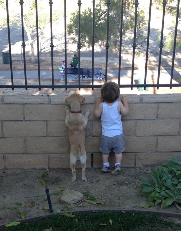 ペットは大切な家族!犬や猫と人間の子供の画像 (70)