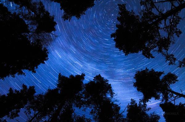 綺麗すぎ!フィンランドの夜空、満天の星空の写真 (12)