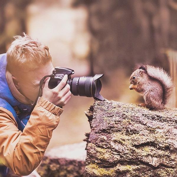 コンスタ・パンカ (Konsta Punkka)の野生動物写真 (4)
