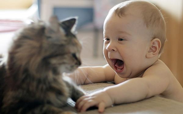 ペットは大切な家族!犬や猫と人間の子供の画像 (48)