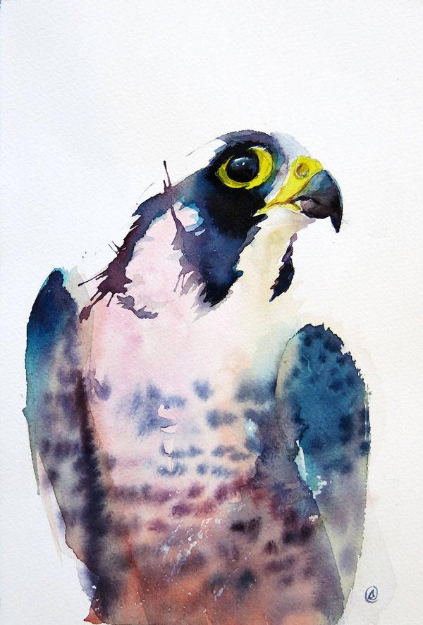 フクロウやワシなどの鳥類を描いたカラフルな水彩画 (2)